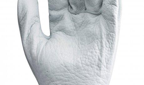 Gant de maitrise